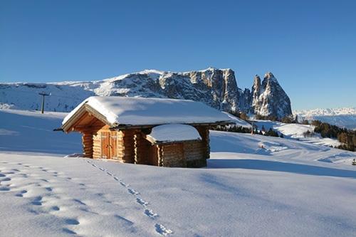 Winterwandern auf der Seiseralm mit Südtiroler Almgenuss