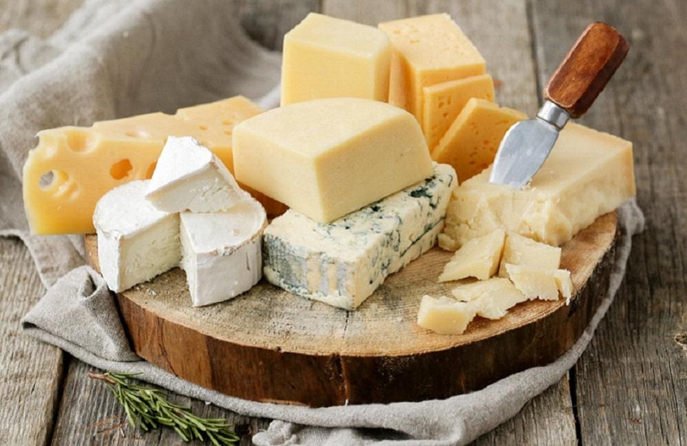 Bester Käse aus Südtirol
